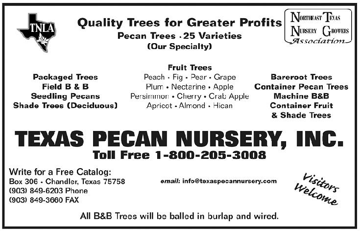 Address Po Box 306 Chandler Tx 75758 Email S Texaspecannursery Contact Sam Pollard Phone 903 849 6203 Fax