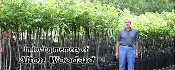 Address 389 Howell Rd Princeton Nc 27569 Email Woodardsfarmandnursery Aol Contact Phone 919 915 3561 Fax