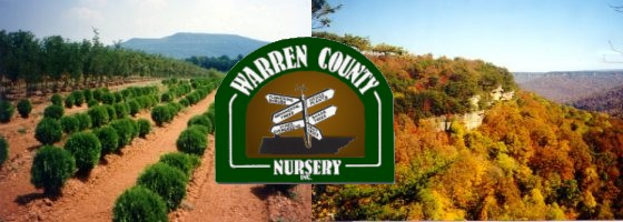 Warren County Nursery Mcminnville Tn